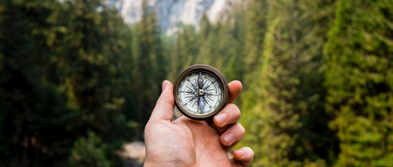 Image of a compass in a persons hand while standing in a forest.